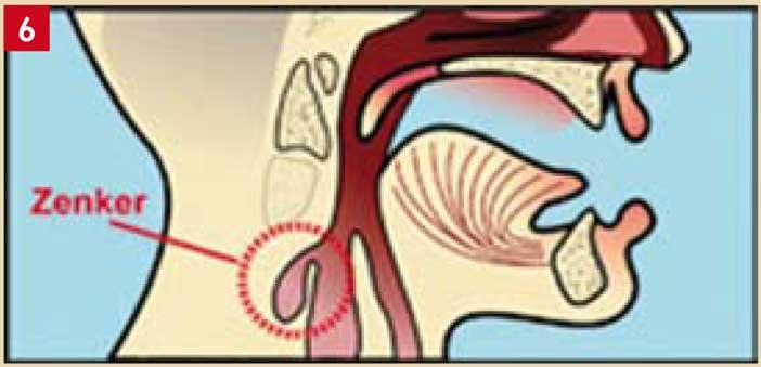 Pathologies-médicales-générales