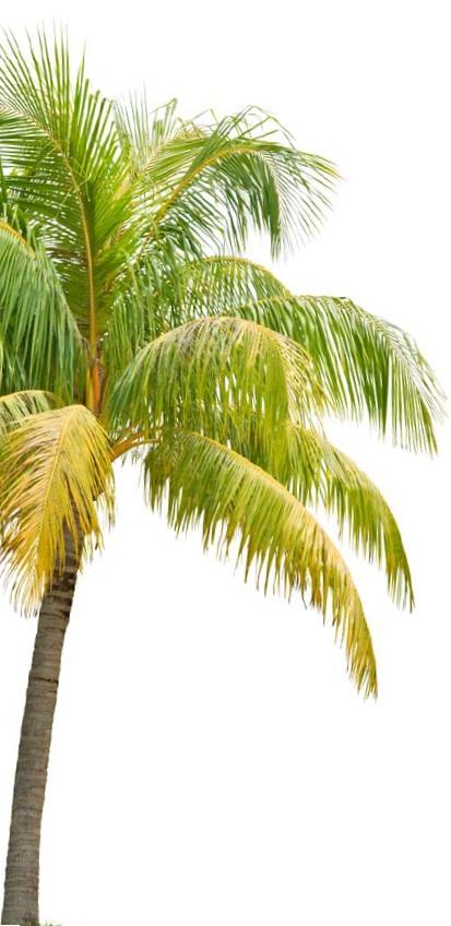 Voyages et vacances conseils pratiques pour vos patients