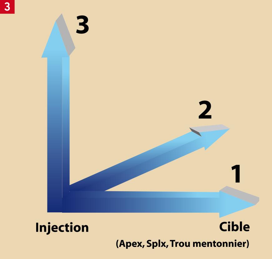 le vasoconstricteur contenu dans le produit
