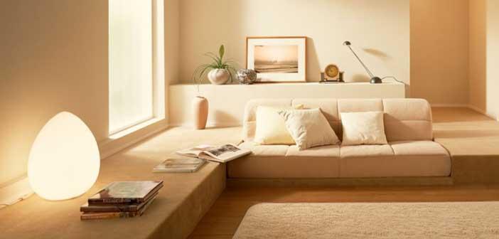 le statut de loueur meubl. Black Bedroom Furniture Sets. Home Design Ideas