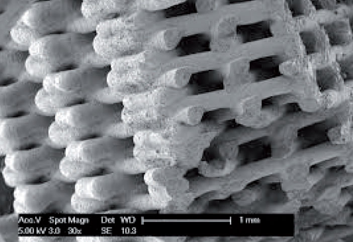 Structure-en-hydroxyapatite-realisee-en-fabrication-additive
