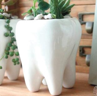 Des dents qui font sourire