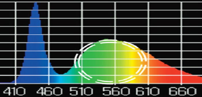LED conventionnelle 6500K