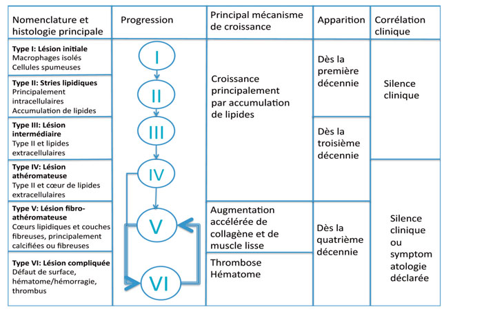 classification-evolutive-des-lesions