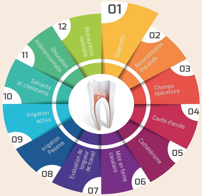 Deroulement du traitement endodontique